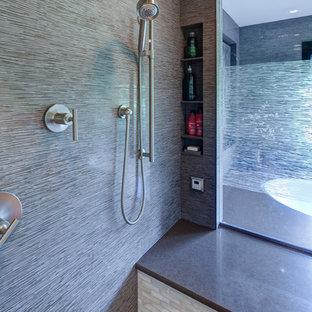 Masterful Spa-like Bathroom Suite-Aurora, IL