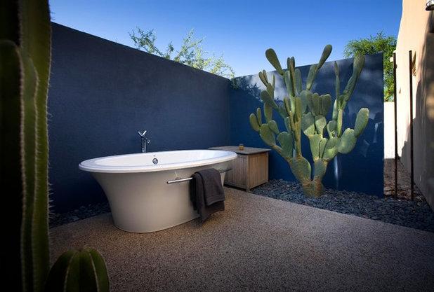 10 Creative Ideas For Cactus And Succulent Gardens