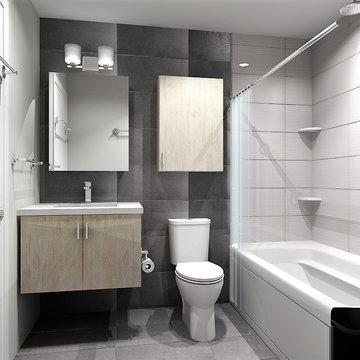 Modern Bathroom Reno   Washington, DC