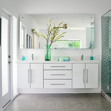 Contemporary Bathroom by PSModern, LLC
