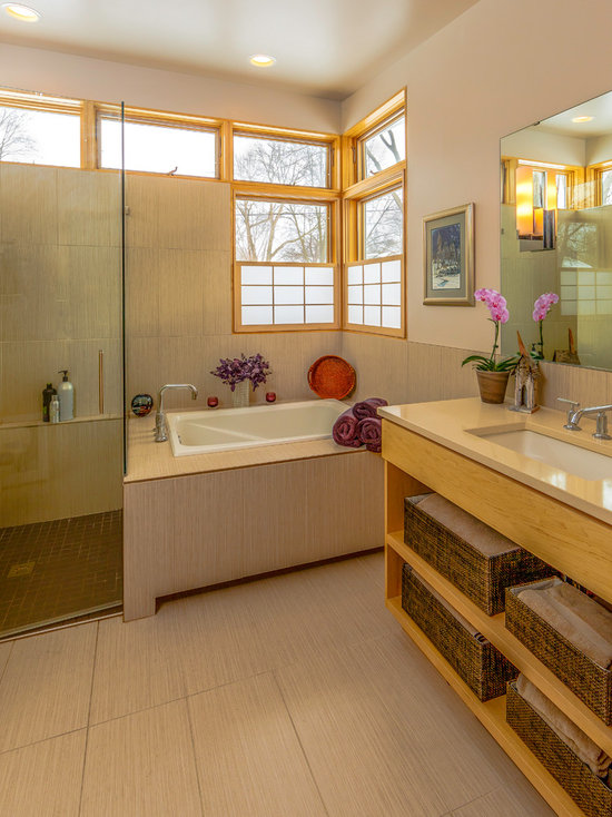 Tub In Shower Stall Houzz