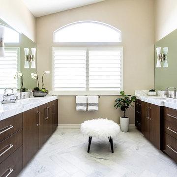 Oak Park Master Bathroom