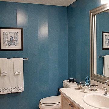 Plainview Guest Bath Update