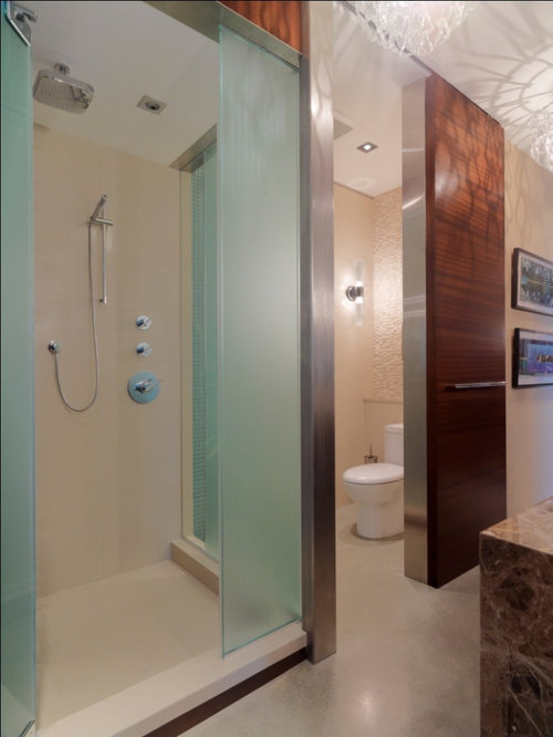 Private Toilet Ideas Pictures Remodel And Decor