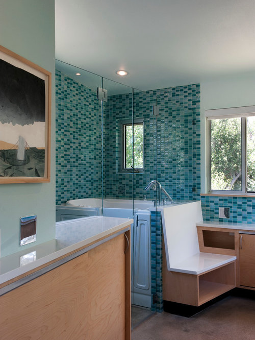 Bathroom Remodel Ideas With Walk In Tub And Shower walk-in tubs | houzz