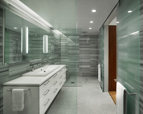 Glass Shower Partition Houzz