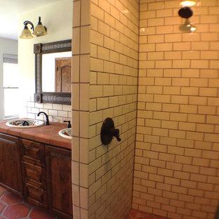 75 Most Popular Traditional Terra Cotta Tile Bathroom
