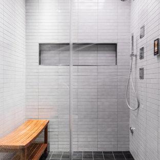 Stand Up Shower Modern Bathroom Ideas | Houzz