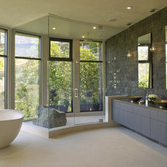 contemporary bathroom Steam Showers