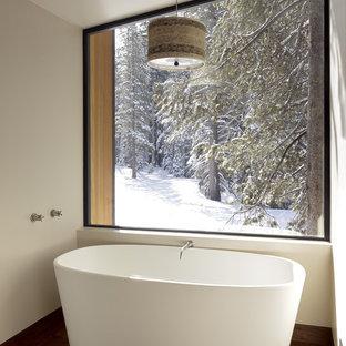 Foto di una stanza da bagno minimalista con vasca freestanding