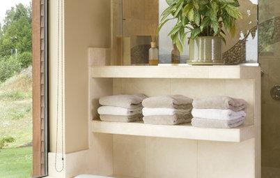Purifiez votre salle de bains gr ce 8 plantes d polluantes for Quelle plante pour salle de bain
