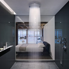 modern bathroom by Hansgrohe USA
