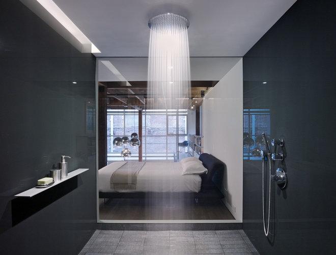 Contemporary Bathroom by Hansgrohe USA