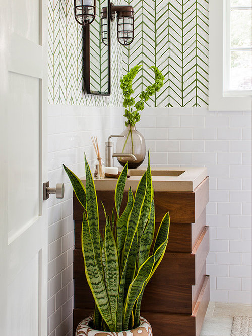 Air plant chandelier houzz example of a mid sized transitional white tile bathroom design in atlanta with multicolored walls aloadofball Images