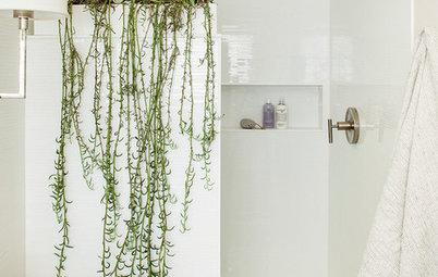 11 sätt att inreda med häng- och klängväxter