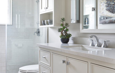 50-Square-Foot Bathroom Goes From Dark to Light