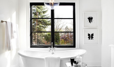 The Allure of Black-Framed Windows – Faux Pas or Fabulous?