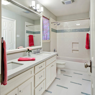 Transitional multicolored floor bathroom photo in Other with recessed-panel cabinets, white cabinets and a niche