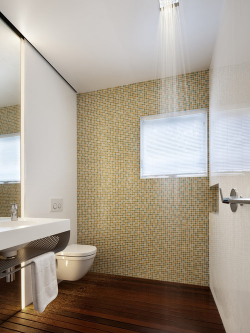Attractive Small Trendy Multicolored Tile And Mosaic Tile Dark Wood Floor Walk In  Shower Photo In
