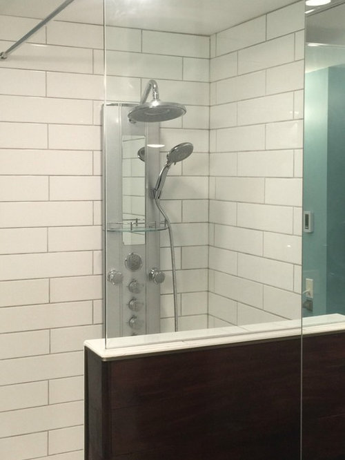 Tub End Wall Glass Panel Showers