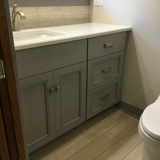 Small arts and crafts master wood-look tile floor alcove shower photo in Milwaukee with gray cabinets, gray walls, an undermount sink, quartz countertops and a hinged shower door