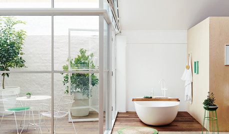 Windows That Expose Your Bathroom to Light Without Exposing You