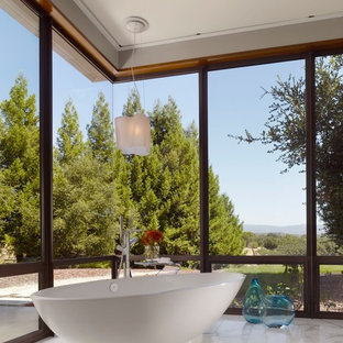 Freestanding bathtub - contemporary freestanding bathtub idea in San Francisco