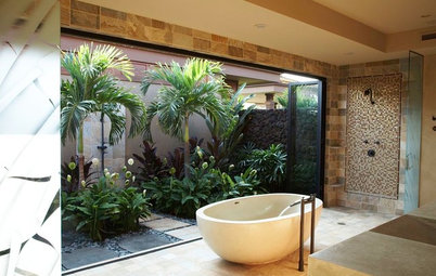 Bring the Outside In With House Plants