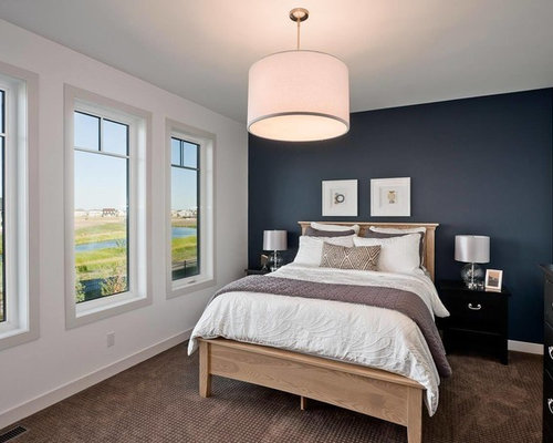 Navy Accent Wall Houzz