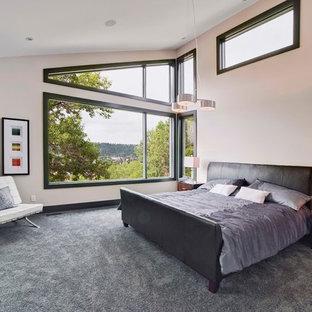 Dark Carpet Bedroom Ideas And Photos Houzz