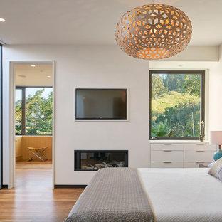 Ispirazione per una grande camera matrimoniale contemporanea con pareti bianche, pavimento in legno massello medio e camino classico