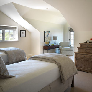 Mid-sized transitional guest carpeted bedroom photo in Other with white walls and no fireplace
