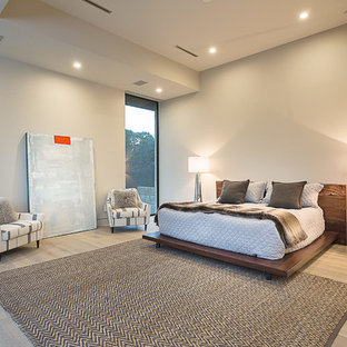 Bedroom - contemporary light wood floor bedroom idea in Austin with white walls