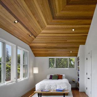 Bedroom - contemporary medium tone wood floor bedroom idea in San Francisco with white walls