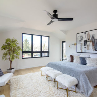 Large transitional master light wood floor bedroom photo in Denver with white walls and no fireplace