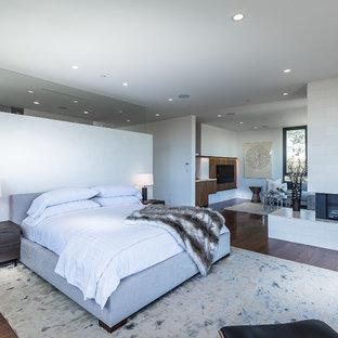 Esempio di una camera matrimoniale minimalista di medie dimensioni con pareti bianche, parquet scuro, camino lineare Ribbon e cornice del camino in pietra