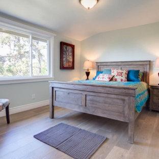Minimalist guest medium tone wood floor bedroom photo in San Francisco with white walls