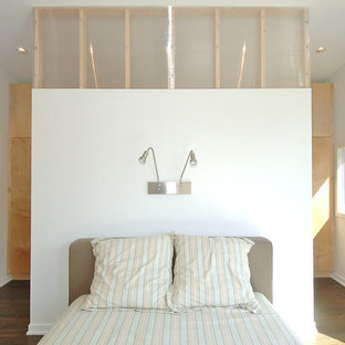 Example of a minimalist master dark wood floor bedroom design in Minneapolis with white walls