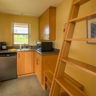 Modelo de habitación de invitados minimalista, de tamaño medio, sin chimenea, con paredes amarillas y suelo de cemento
