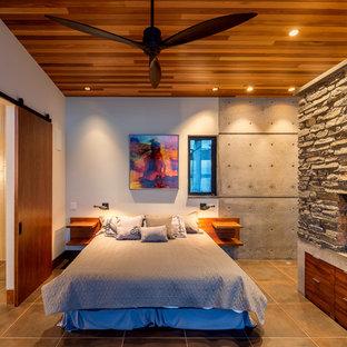 Imagen de dormitorio tipo loft, moderno, pequeño, con paredes blancas, suelo de baldosas de porcelana, chimenea de doble cara, marco de chimenea de piedra y suelo gris