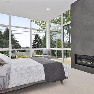 Свежая идея для дизайна: маленькая спальня в современном стиле с белыми стенами, ковровым покрытием и горизонтальным камином - отличное фото интерьера