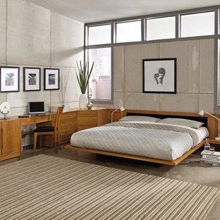 Modelo de habitación de invitados urbana, grande, sin chimenea, con paredes grises, suelo de cemento y suelo gris