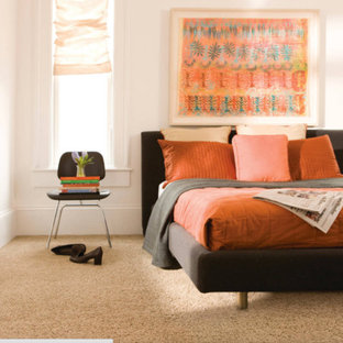 Inspiration for a mid-sized contemporary master bedroom in Other with white walls, carpet, no fireplace and brown floor.