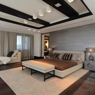 Bedroom - contemporary dark wood floor bedroom idea in Miami with gray walls