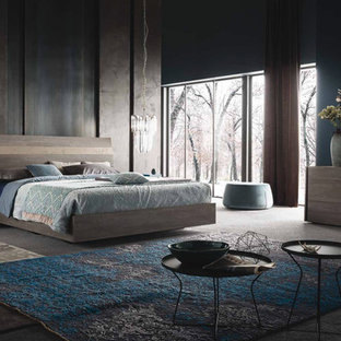 Foto de dormitorio principal, contemporáneo, de tamaño medio, sin chimenea, con paredes grises, moqueta y suelo gris