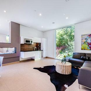 Modelo de habitación de invitados actual, grande, con paredes blancas y chimenea de doble cara