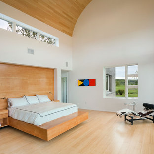 Bedroom - contemporary light wood floor bedroom idea in New York with white walls