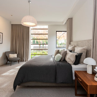 Design ideas for a contemporary master bedroom in Melbourne with white walls, carpet and multi-coloured floor.