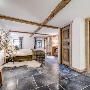 Mountain style limestone floor bedroom photo in Berkshire