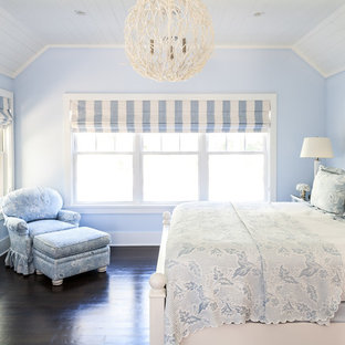 Mid-sized beach style master dark wood floor bedroom photo in New York with blue walls and a standard fireplace